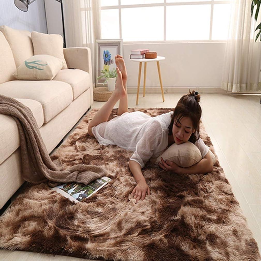 甘くする視力気づくGLYYふかふかマイクロファイバーのロングシャギー ラ約 120x160cm 洗える ホットリビング ルームカーペット対応 床暖房じゅうたん ベッドルーム ラグマッ モトリー ネクタイ染色 寝室 絨毯春 夏 秋 冬 用 ブラウン