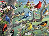 Buffalo Games - Hautman Brothers - Birds in an Orchard - 1000 Piece Jigsaw Puzzle