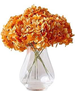 Best big orange flower Reviews