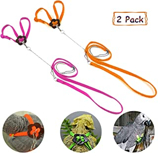 Bonaweite 2 Pack Adjustable Harness Leash, Pet Birds Nylon Anti-bite Training Hraness Outside Walk for Parrot African Grey Cockatoo Macaw Ringneck Parakeet Cockatiel Reptile Lizar