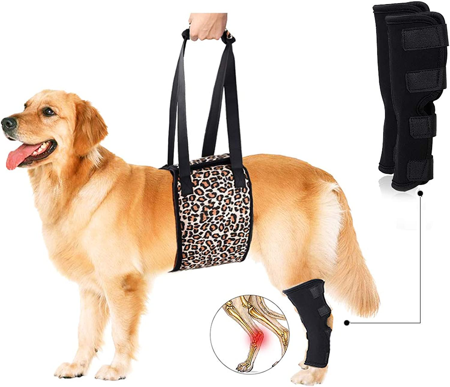 Petsidea Dog Lift Harness Sing with 1pc Dog Rear Leg Brace Support Help Old Dogs for Hip dysplasia, Rehabilitation, Joint Injuries (XLarge, Leopard Print)
