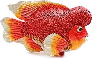 Trinket Jewelry Box with Swarovski, Decorative Figurines Red Exotic Fish 11 Inch