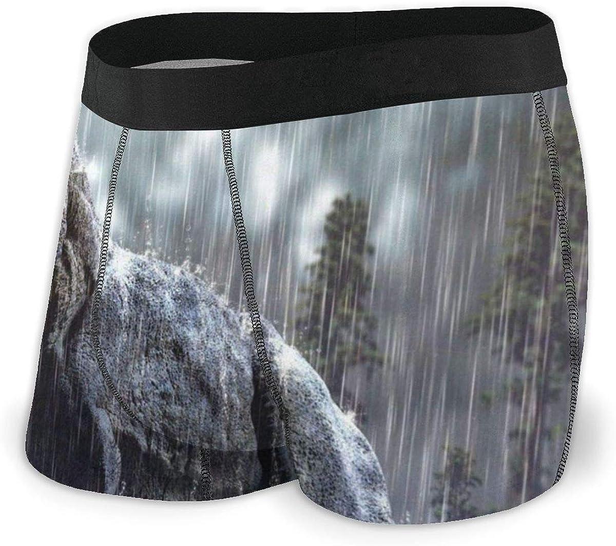 Mens Boxer Briefs Tropical Dinosaur Landscape Nature Breathable Underwear