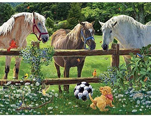 Kits de pintura de diamantes 5D para bricolaje, juego de caballos con pintura de perros, por números, para adultos, principiantes, para decoración de la pared del hogar, regalo por 40x50cm