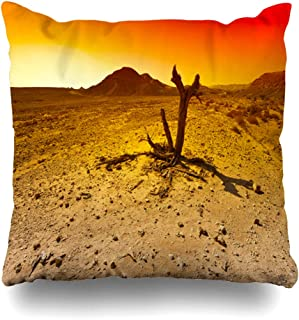 Ahawoso Throw Pillow Covers Terrain Boulder Raging Colors Rocky Hills Negev Geology Desert Nature Adventure Canyon Country Crater Home Decor Zippered Pillowcase Square Size 20 x 20 Inches Cushion Case
