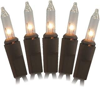 Vine lights 2270-02 50Lt Mini Bw Light Set Clear