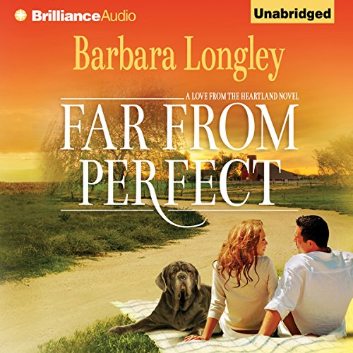 Far from Perfect cover art