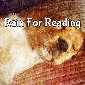 Rain For Reading