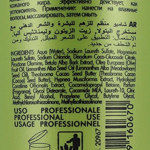 Inebrya Ice Cream Balance Shampooing 300 ml