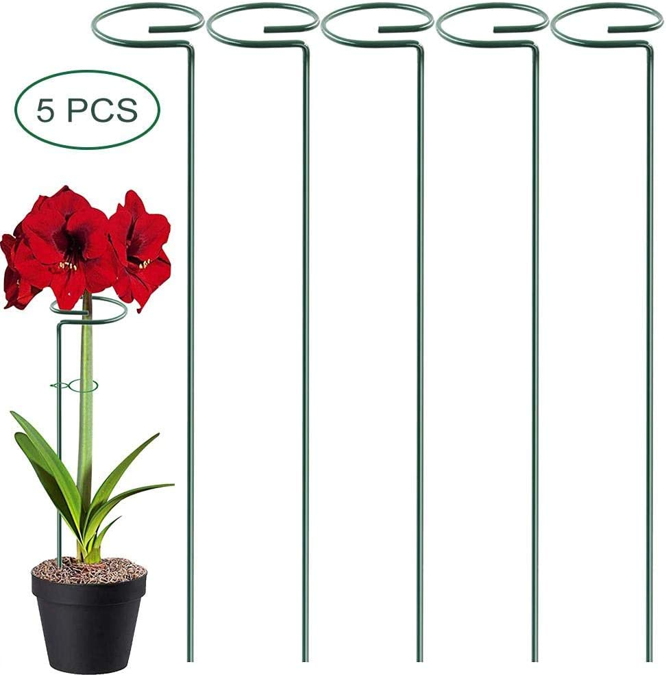 Plant Support Stakes Steel Garden Single Stem Support Stake Plant Cage Support Ring for Flower Tomatoes 5PCS Garden Flower Support Peony Rose Lily