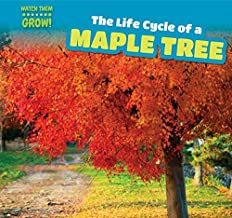 The Life Cycle of a Maple Tree (Watch Them Grow!)