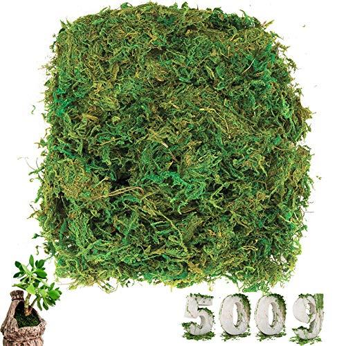 cersaty® 500g Künstliche Moss Deko Flechten Simulation Grün Fake Pflanzen für Floristik und DIY Dekoration