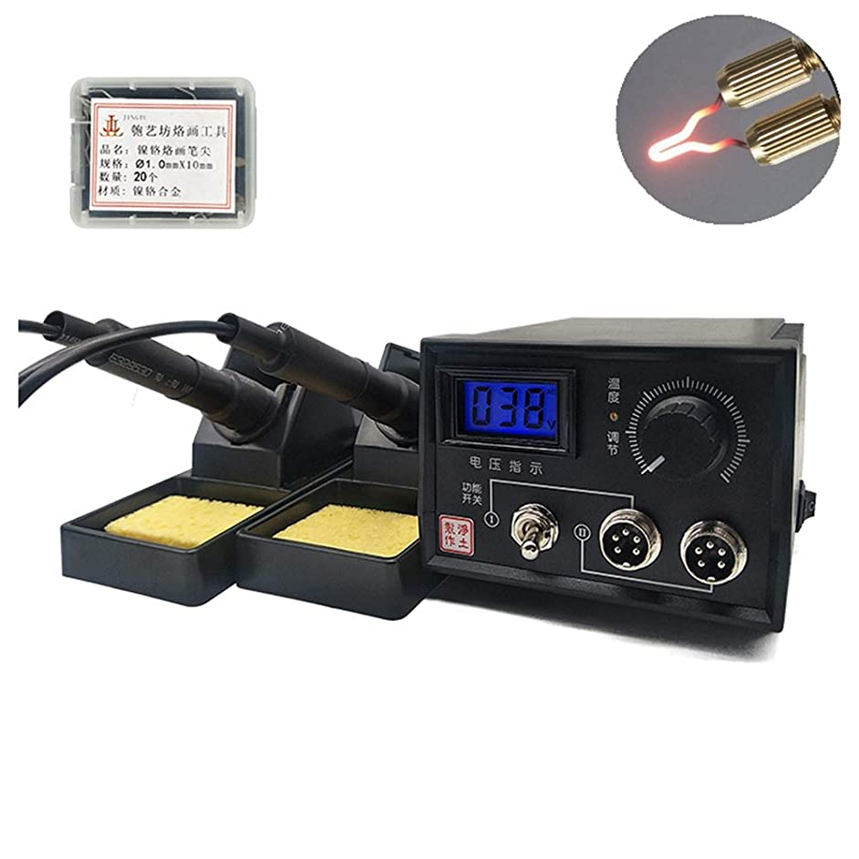 Wood Burning Kit 60-Watt Wood Burners with 20 Pyrography Wire Tips Adjustable Temperature Control for Wood Leather and Gourd (Dual Port+Digital Display)