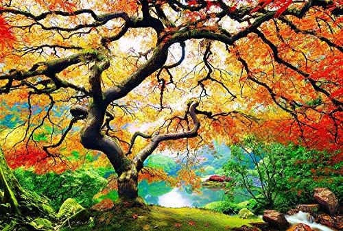 PICMA nachtleuchtend Wandbild XXL Wanddeko Leinwandbild Baum Ahorn im Herbst, Kunstdruck fluoreszierendes Wald Bild