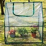 SKYLANTERN Serre de Jardin en Plastique - Mini Serre Jardin avec Fermeture à Zip - Abri pour Plante et Culture (Dimensions : 92 x 92 x 92 cm)