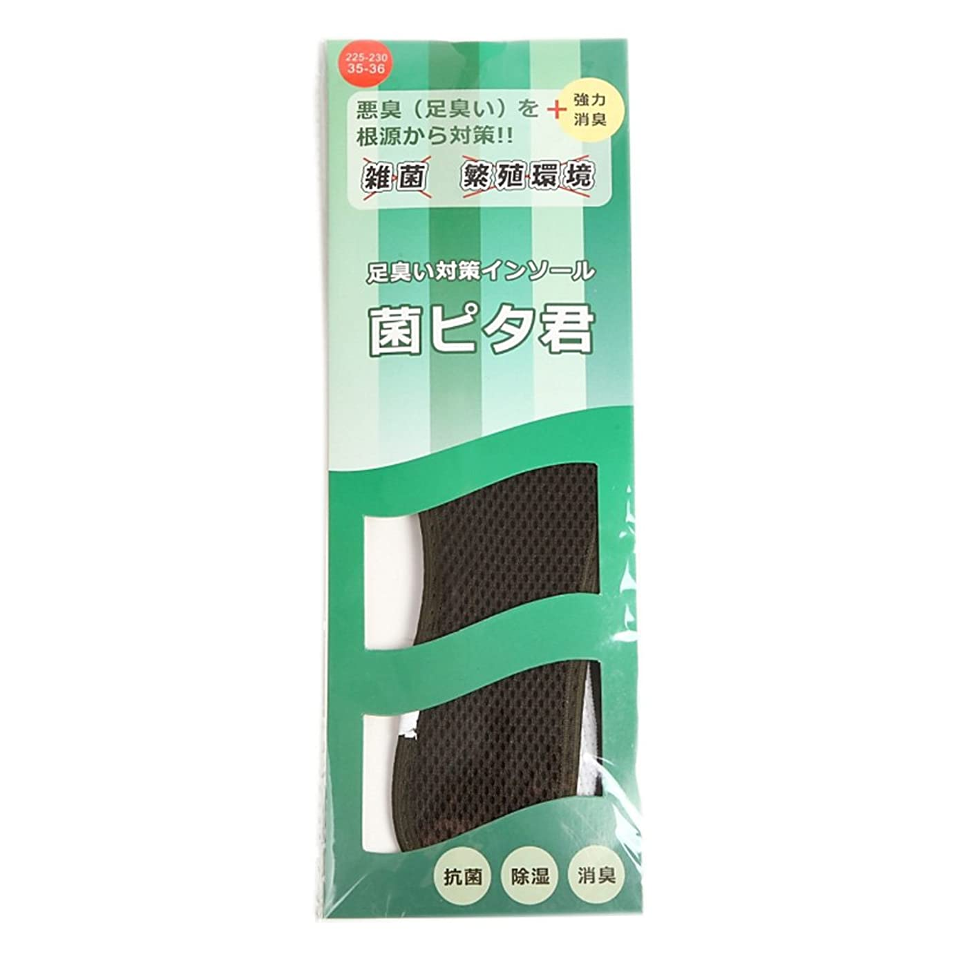プログラム解放する一元化する足臭い対策インソール(靴の中敷) 菌ピタ君 1足分(2枚入) (29.5~30cm)