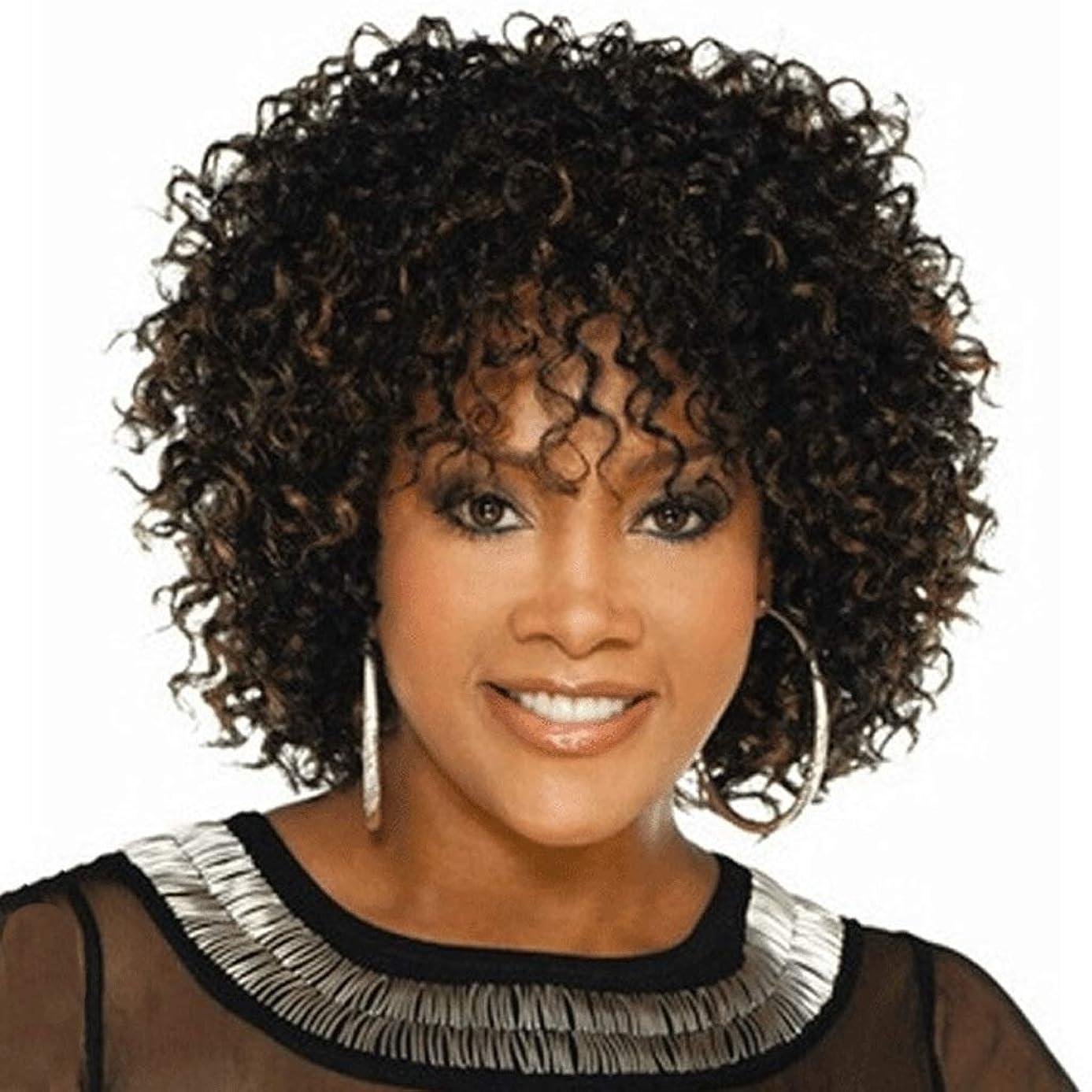 霧深い生じるタイル黒人女性、髪アフロ変態カーリーナチュラルブラックヘアウィッグ100%耐熱繊維用ショートカーリーウィッグ (色 : ブラック)
