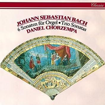 Bach, J.S.: Trio Sonatas