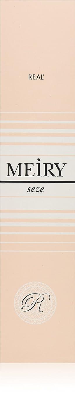 冊子脊椎独占メイリー セゼ(MEiRY seze) ヘアカラー 1剤 90g 9NB