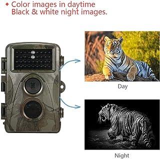 MIASY HD Profesional Fauna de Caza de la cámara Digital Impermeable al Aire Libre de Vigilancia de la videocámara de Infrarrojos de visión Nocturna de detección de Movimiento DV