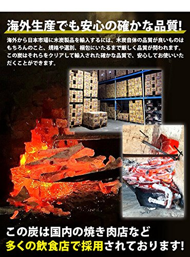 炭のたかやま『中国産オガ炭Aグレード』