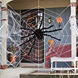 OLES Halloween Decorations Spider Web & Spider Kit, 1 Giant (16.4ft) Spider Web + 1 Pack Stretchable Cobweb + 1 Large (29.5inch) Fake Spider for Halloween Party Props Supplies Outdoor Yard Decor