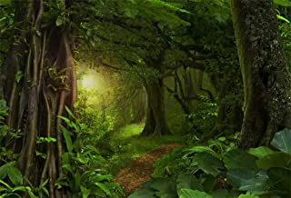Best forest photo background Reviews
