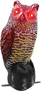 Best solar powered owl scarecrow Reviews