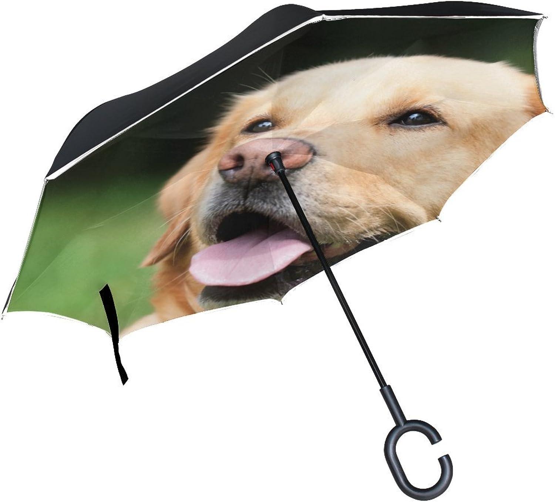Animal Dog Labrador Retriever Fluffy Mix Yellow Adorable Brown Puppy Ingreened Umbrella Large Double Layer Outdoor Rain Sun Car Reversible Umbrella