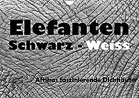 Elefanten Schwarz - Weiss (Wandkalender 2022 DIN A4 quer): Afrikas faszinierende Dickhaeuter (Monatskalender, 14 Seiten )