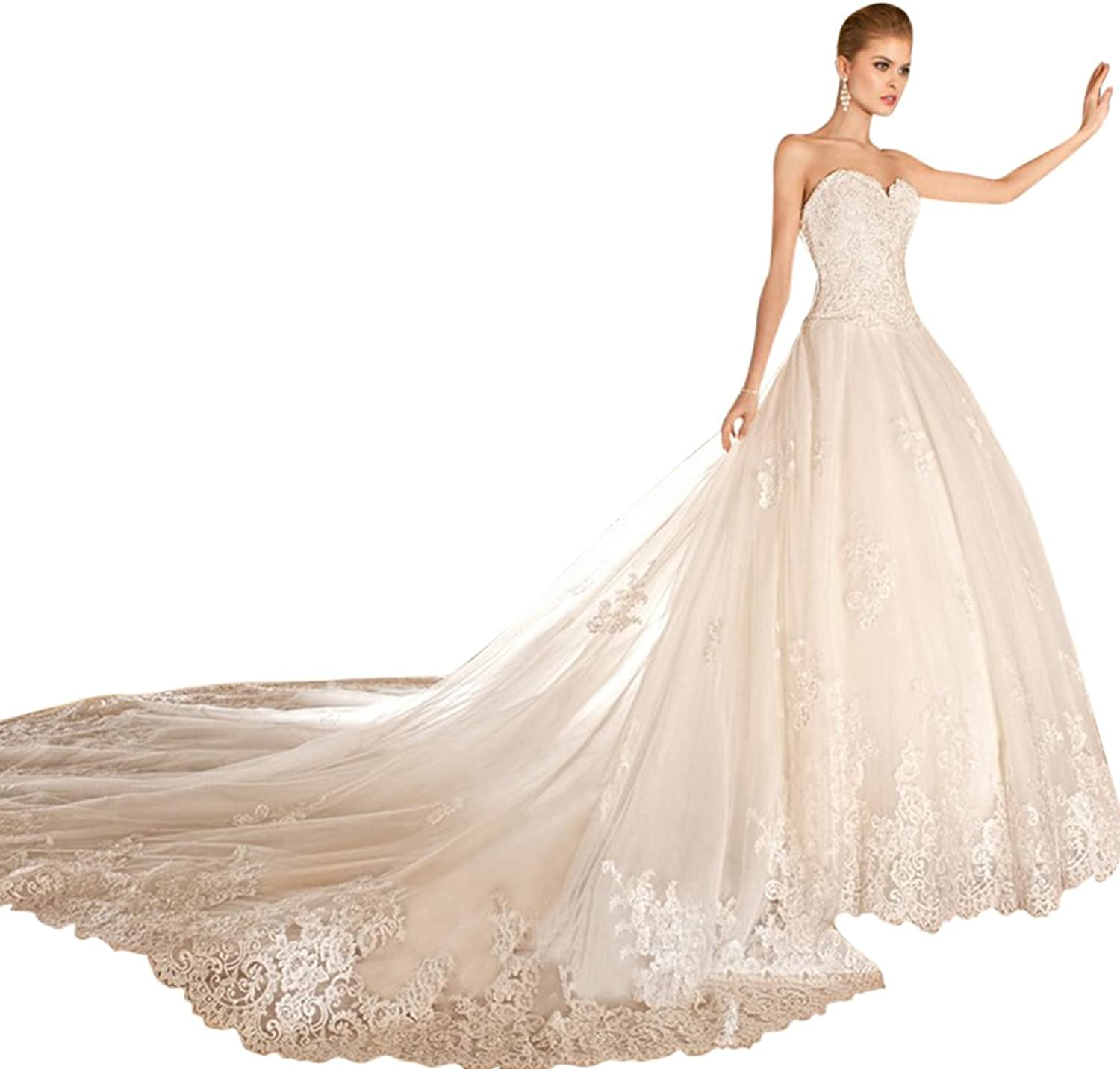 JoyVany Sexy Backless Lace Ball Gown Wedding Dress Tulle Bridal Gowns with Train