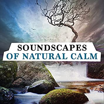 Soundscapes of Natural Calm