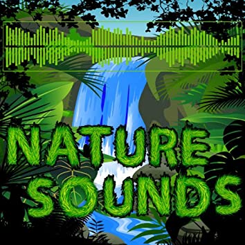 Nature Sounds - Soothing Sounds of Nature