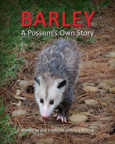 Barley, a Possum's Own Story