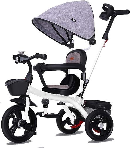 Moolo Le Tricycle d'enfants Trike, Poussette de poignée de Chaise de poussée de bébé de Roue de 3 Roues a guidé l'enfant en Bas age avec Le siège réversible d'auvent démontable 8 Mois - 6 Ans