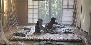 (Aideaz) 特大 蚊帳 選べる 4m 10畳 か 3m 6畳 大きい キング サイズ キャンプ アウトドア ベビー ムカデ 防虫 対策