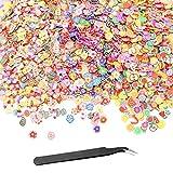 YapitHome 3000 Pezzi 3D Nail Slice Fruit Fruit Nail Decor Fimo fette nail, per Decorazione Punte per Unghie