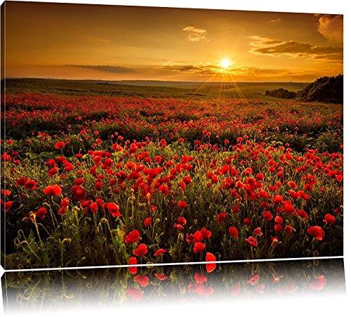 WTD Toile décorative panoramique Motif coquelicots au coucher du soleil 80 x 60 cm/100 x 40 cm/120 x 50 cm/120 x 80 cm