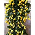 SAMRIDDHI Artificial Hanging Orchid Rose Shaped Flowers…