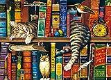 EACHHAHA 1000 Piezas Puzzle,Libro y Gato Puzzles para Adultos, 70x50CM,Rompecabezas de Piso Juego de Rompecabezas y Juego Familiar