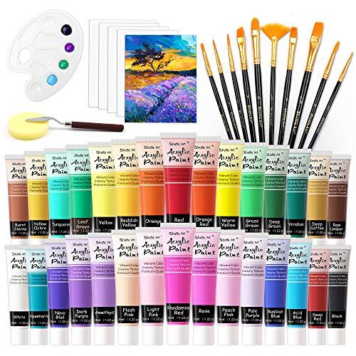 48 Pack Acrylic Paint Set, Shuttle Art 30 Colors Acrylic Paint (36ml) with 10 Brushes 5 Canvas 1 Paint Knife 1 Palette 1 Sponge, Complete Set for Kids, Adults Painting on Canvas Rocks Wood Ceramic
