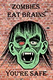 Zombies Eat Brains You're Safe: Funny Zombie Face Notebook Journal Diary to write in - craziness, brick background