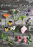 Plants Are Magic Magazine - Volume 4: For makers, dreamers & plant lovers - Rebecca Desnos