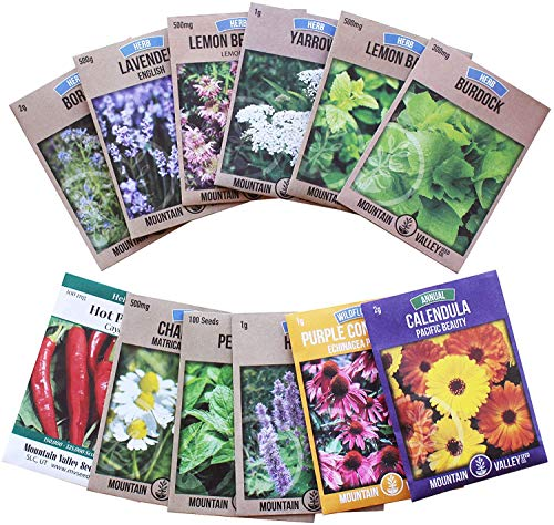 Best yarrow seeds for 2020