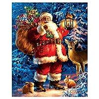 スコビッチクリスマス柄ダイヤモンド塗装クリスマスギフトDiy手芸刺繍キット壁アート装飾-30*40cm