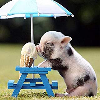 Pig Diamond Painting 5D Pigs Eating Ice Cream Gift Christmas By Number Kits, Painting..