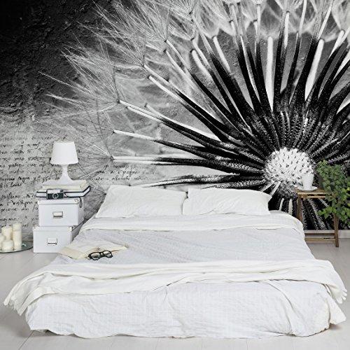 Apalis Vliestapete Blumentapete Pusteblume schwarz und Weiß Fototapete Breit   Vlies Tapete Wandtapete Wandbild Foto 3D Fototapete für Schlafzimmer Wohnzimmer Küche   grau, 94776