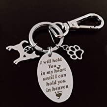 Pet Memorial Keychain- Pet Memorial Gift Engraved for Dogs Cats,Stainless Steel Sympathy Gift for Loss of Loved One