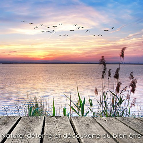 Nature, détente et découverte