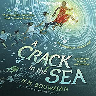 A Crack in the Sea audiobook cover art